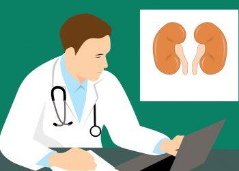 bobrek hastaliklari - Böbrek hastalıklarından korunmak için 10 altın kural - Sağlık Haberleri - Sağlıkla İlgili Güncel Bilgi - Prof. Dr. Ülkem Çakır, sağlıksız yaşam alışkanlıklarının böbrek sağlığını gün geçtikçe daha fazla tehlikeye attığını bildiriyor. Ayrıca böbrek sağlığını korumak ve hastalıklara karşı önlem almak için 10 önemli kuralı paylaşıyor.